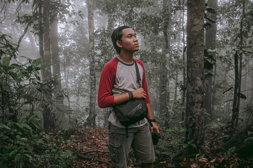 Taman Nasional Gunung Palung, Keanekaragaman Hayati yang Melimpah